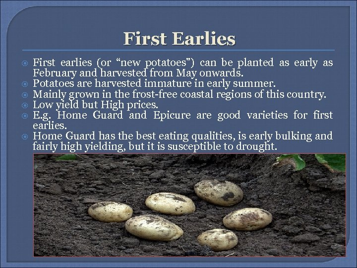 """First Earlies First earlies (or """"new potatoes"""") can be planted as early as February"""