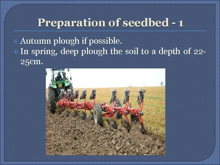 Preparation of seedbed - 1 Autumn plough if possible. In spring, deep plough the