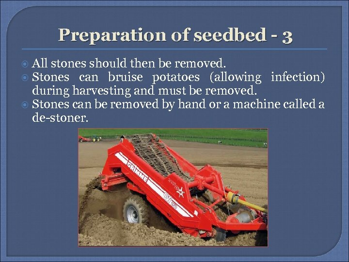 Preparation of seedbed - 3 All stones should then be removed. Stones can bruise