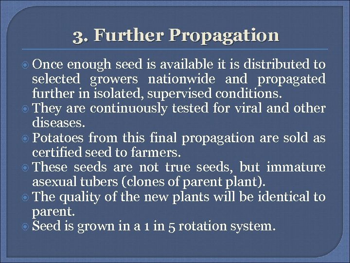 3. Further Propagation Once enough seed is available it is distributed to selected growers