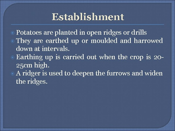 Establishment Potatoes are planted in open ridges or drills They are earthed up or