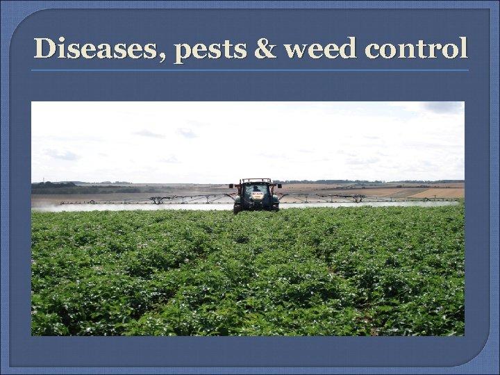 Diseases, pests & weed control
