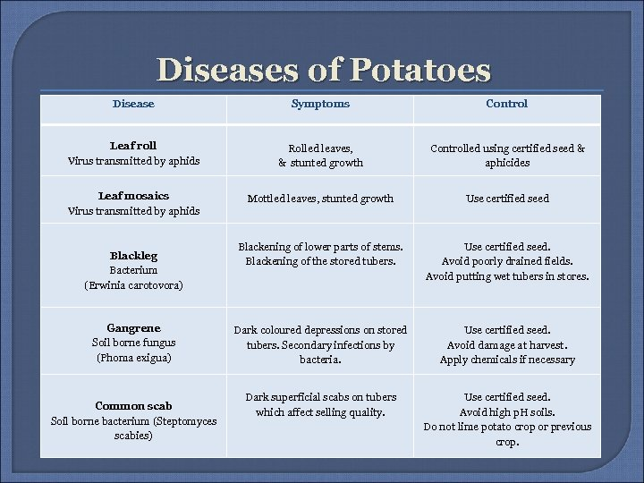 Diseases of Potatoes Disease Symptoms Control Leaf roll Virus transmitted by aphids Rolled leaves,