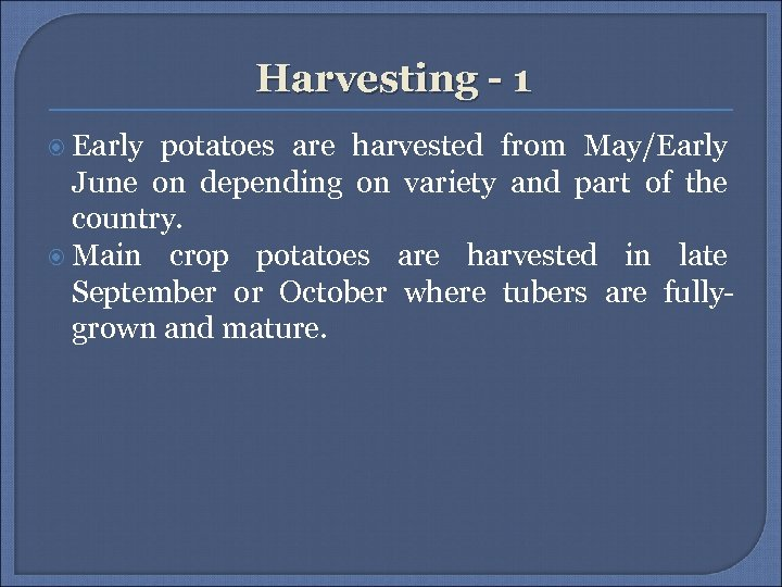 Harvesting - 1 Early potatoes are harvested from May/Early June on depending on variety