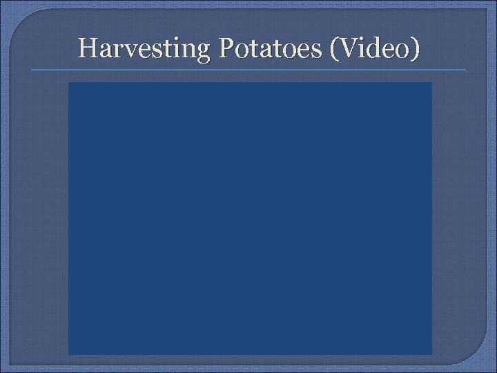 Harvesting Potatoes (Video)