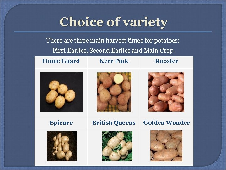 Choice of variety There are three main harvest times for potatoes: First Earlies, Second