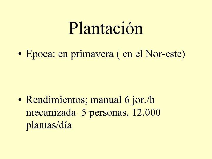 Plantación • Epoca: en primavera ( en el Nor-este) • Rendimientos; manual 6 jor.
