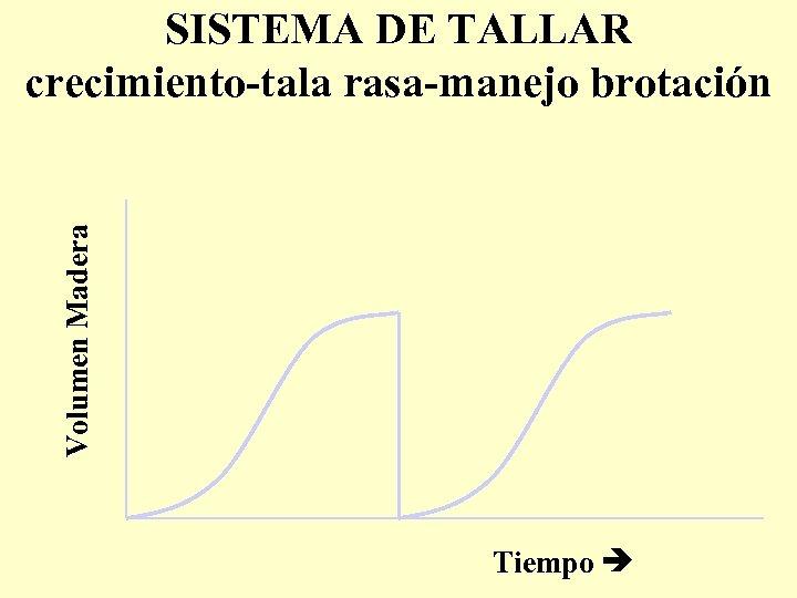 Volumen Madera SISTEMA DE TALLAR crecimiento-tala rasa-manejo brotación Tiempo