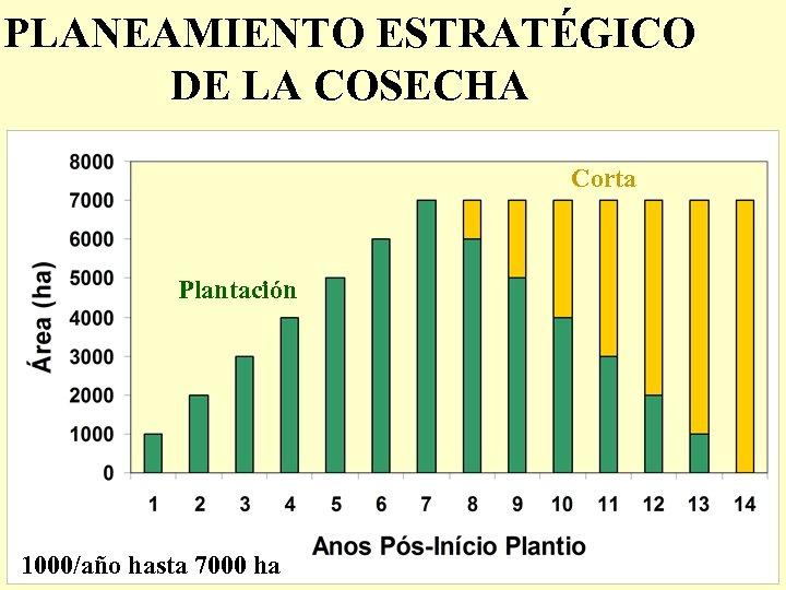 PLANEAMIENTO ESTRATÉGICO DE LA COSECHA Corta Plantación 1000/año hasta 7000 ha