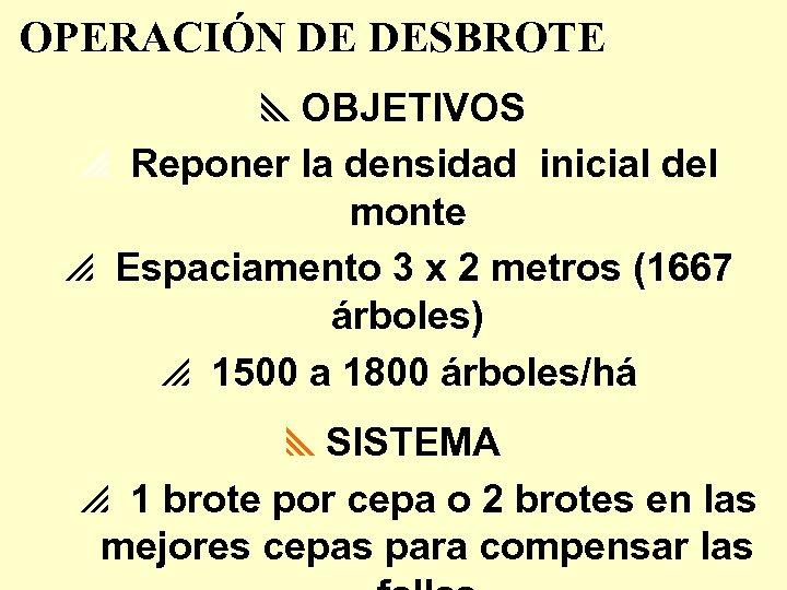 OPERACIÓN DE DESBROTE y. OBJETIVOS p Reponer la densidad inicial del monte p Espaciamento