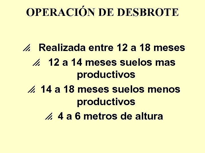 OPERACIÓN DE DESBROTE p Realizada entre 12 a 18 meses p 12 a 14