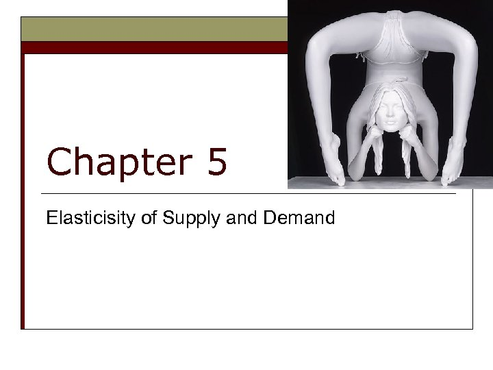 Chapter 5 Elasticisity of Supply and Demand