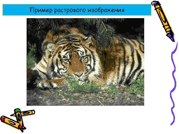 Пример растрового изображения
