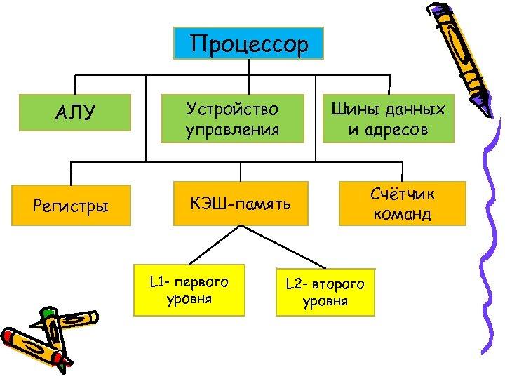 Процессор АЛУ Регистры Устройство управления Шины данных и адресов КЭШ-память L 1 - первого