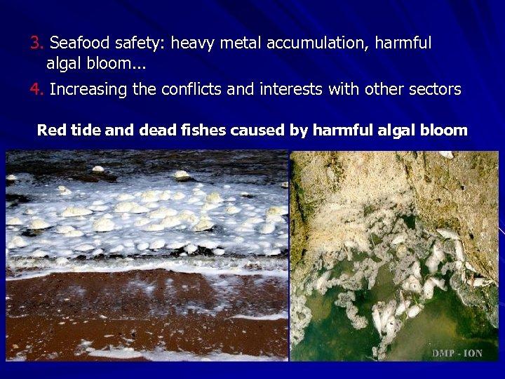 3. Seafood safety: heavy metal accumulation, harmful algal bloom. . . 4. Increasing the