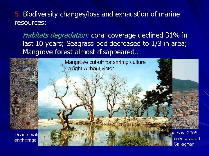5. Biodiversity changes/loss and exhaustion of marine resources: Habitats degradation: coral coverage declined 31%
