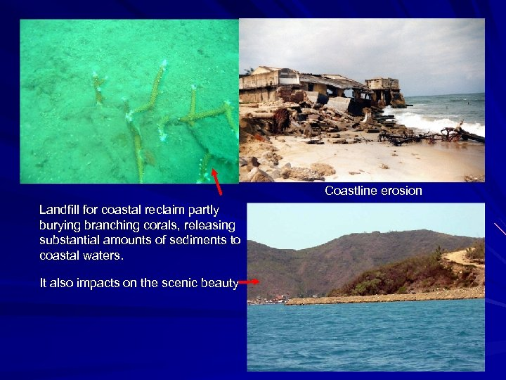 Coastline erosion Landfill for coastal reclaim partly burying branching corals, releasing substantial amounts of