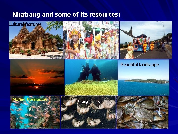 Nhatrang and some of its resources: Cultural features Beautiful landscape Marine Resources Salangane nest