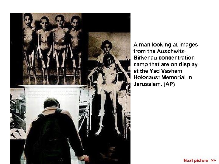 A man looking at images from the Auschwitz. Birkenau concentration camp that are on