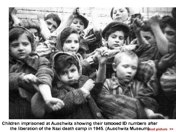 Children imprisoned at Auschwitz showing their tattooed ID numbers after the liberation of the