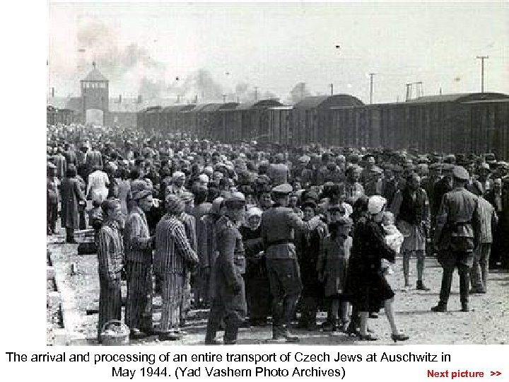 The arrival and processing of an entire transport of Czech Jews at Auschwitz in