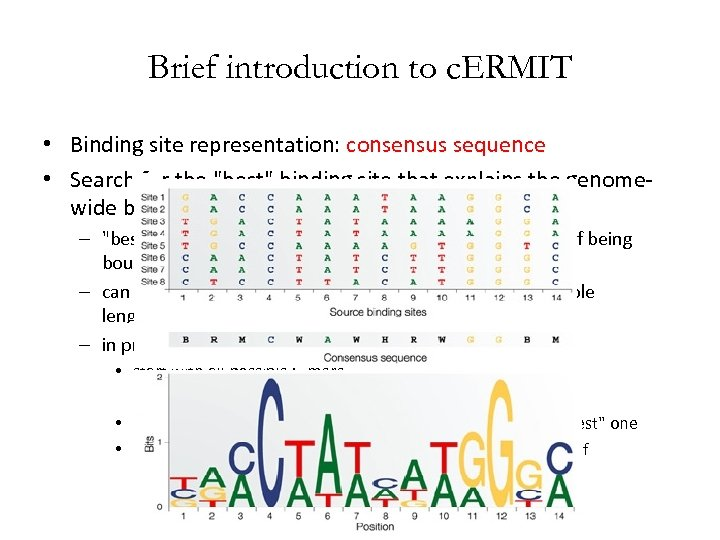Brief introduction to c. ERMIT • Binding site representation: consensus sequence • Search for