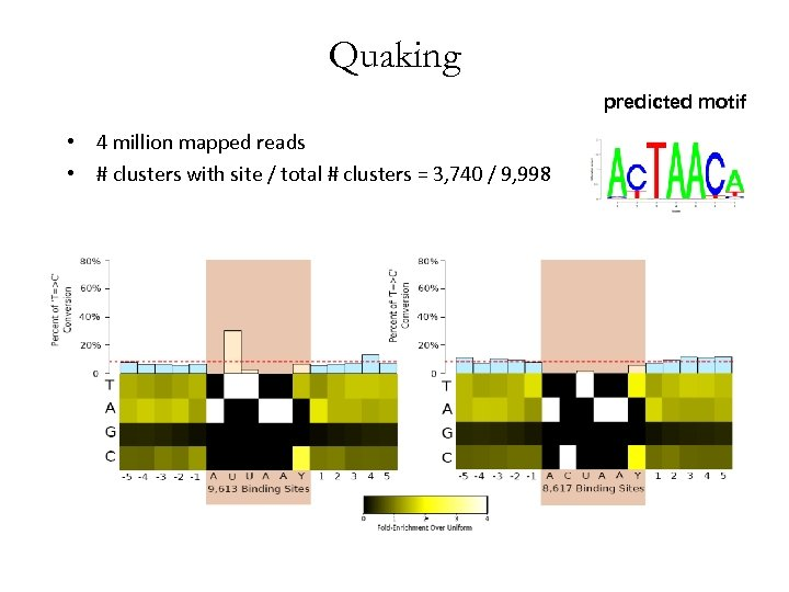 Quaking predicted motif • 4 million mapped reads • # clusters with site /