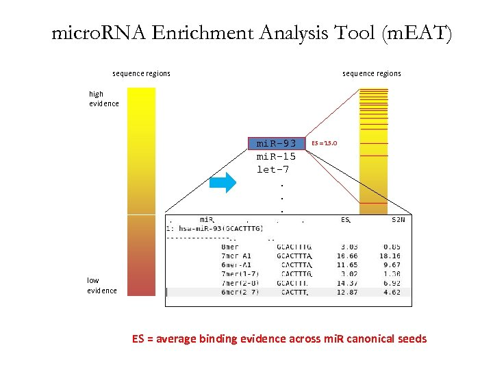 micro. RNA Enrichment Analysis Tool (m. EAT) sequence regions high evidence mi. R-93 mi.