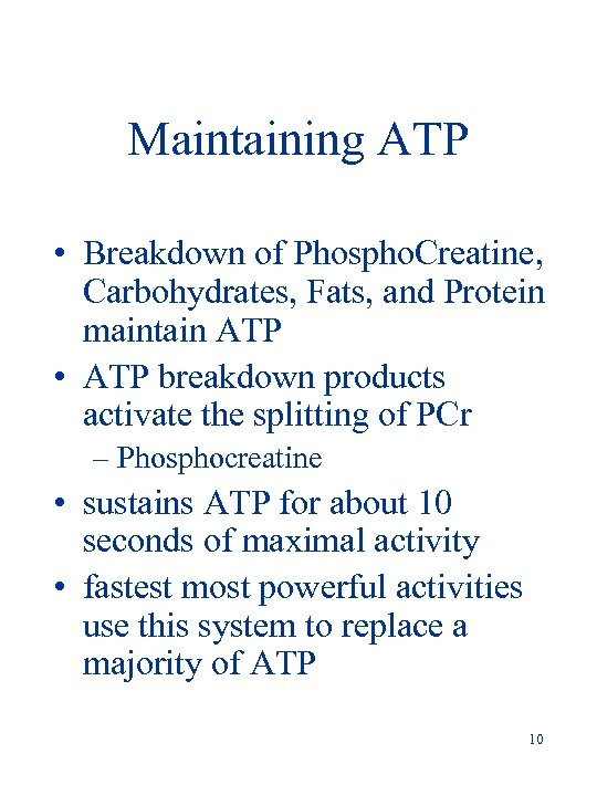 Maintaining ATP • Breakdown of Phospho. Creatine, Carbohydrates, Fats, and Protein maintain ATP •