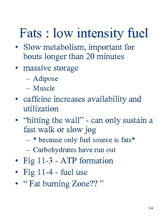 Fats : low intensity fuel • Slow metabolism, important for bouts longer than 20