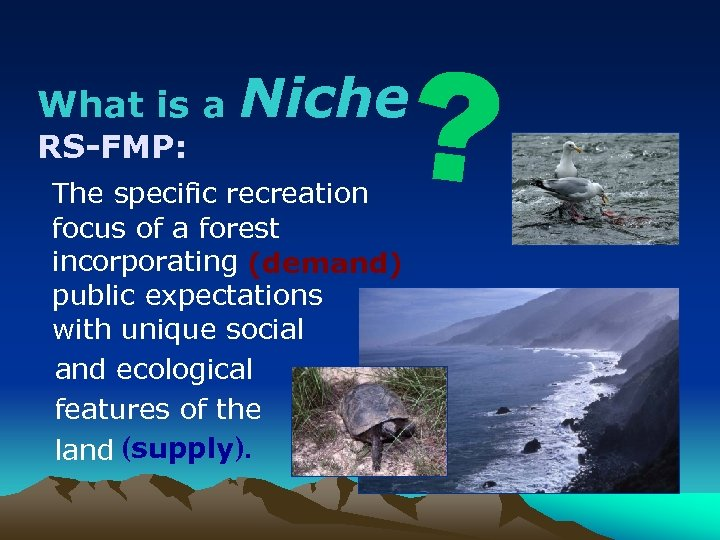 What is a RS-FMP: ? Niche The specific recreation focus of a forest incorporating