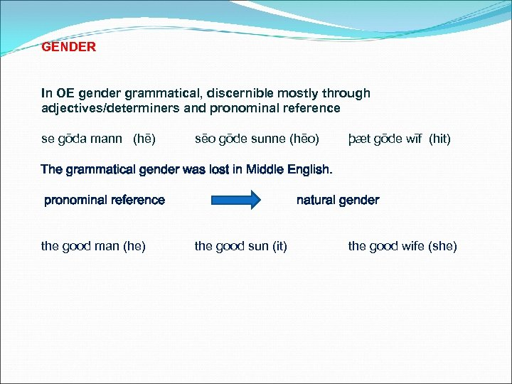 GENDER In OE gender grammatical, discernible mostly through adjectives/determiners and pronominal reference se gōda