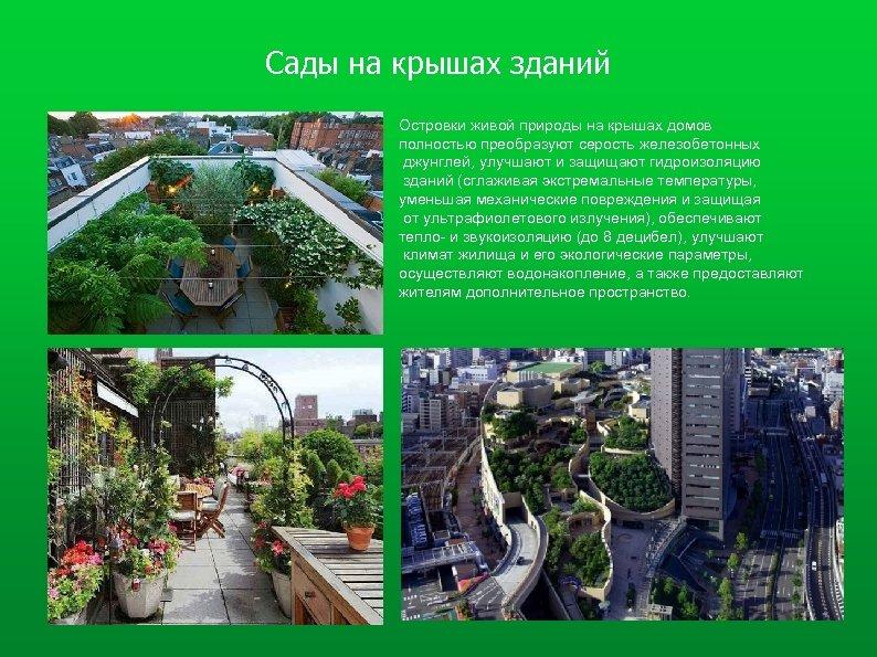 Сады на крышах зданий Островки живой природы на крышах домов полностью преобразуют серость железобетонных
