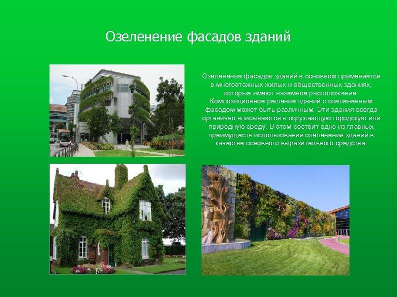 Озеленение фасадов зданий в основном применяется в многоэтажных жилых и общественных зданиях, которые имеют