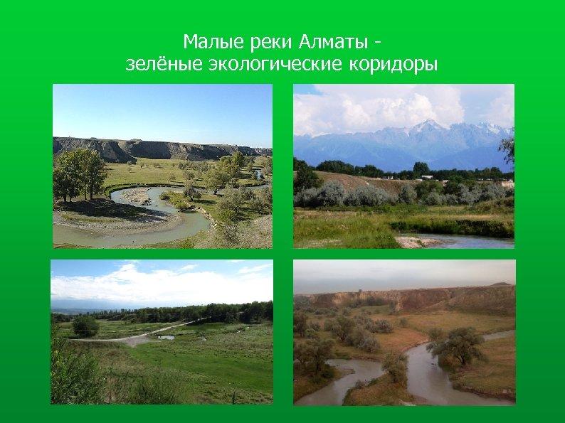 Малые реки Алматы зелёные экологические коридоры