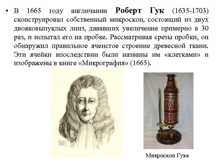• В 1665 году англичанин Роберт Гук (1635 -1703) сконструировал собственный микроскоп, состоящий