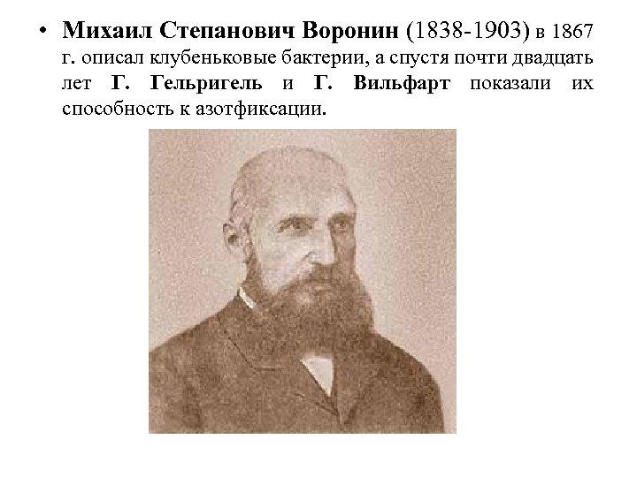 • Михаил Степанович Воронин (1838 -1903) в 1867 г. описал клубеньковые бактерии, а