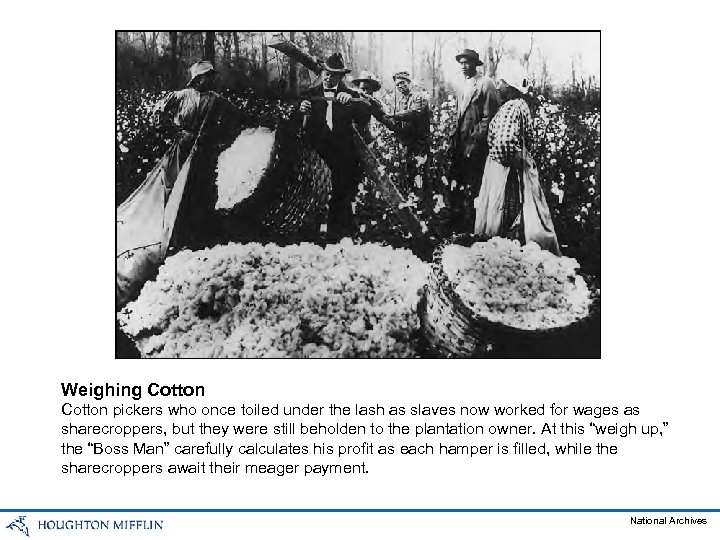 Weighing Cotton pickers who once toiled under the lash as slaves now worked for