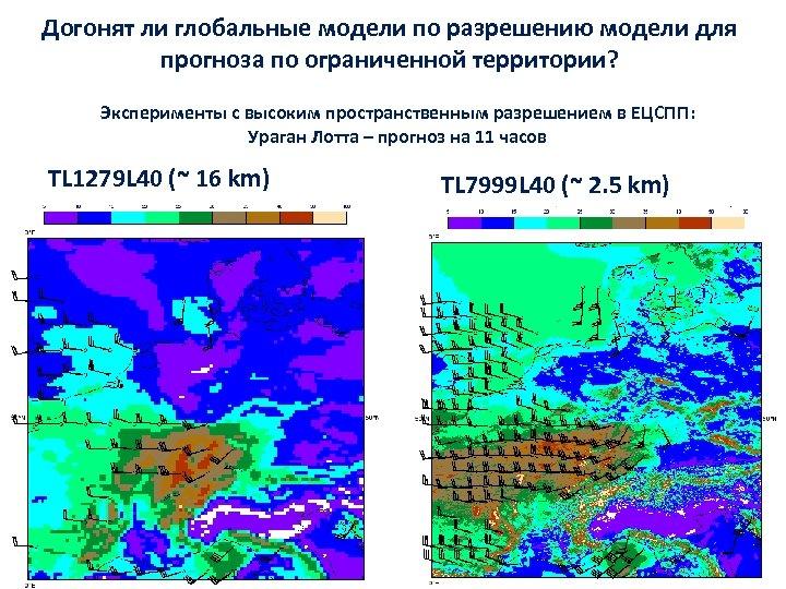 Догонят ли глобальные модели по разрешению модели для прогноза по ограниченной территории? Эксперименты с