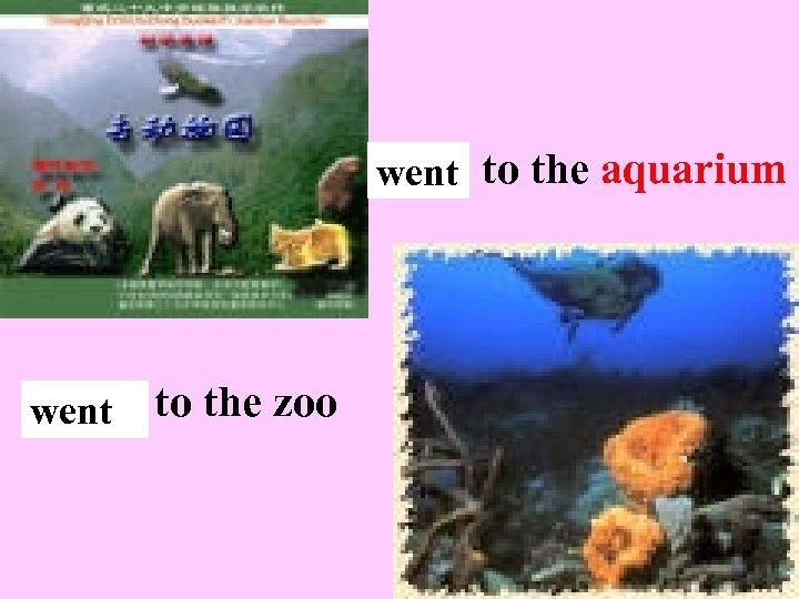 go went to the aquarium go went to the zoo