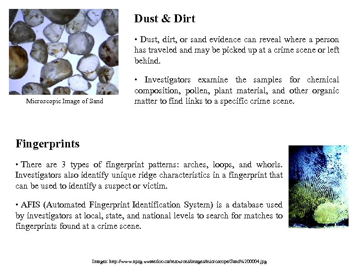 Dust & Dirt • Dust, dirt, or sand evidence can reveal where a person