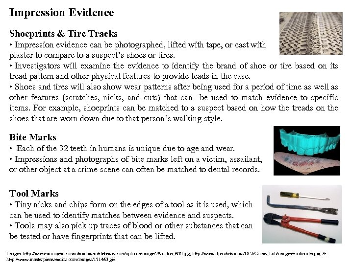 Impression Evidence Shoeprints & Tire Tracks • Impression evidence can be photographed, lifted with