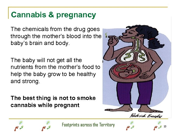 Cannabis & pregnancy The chemicals from the drug goes through the mother's blood into