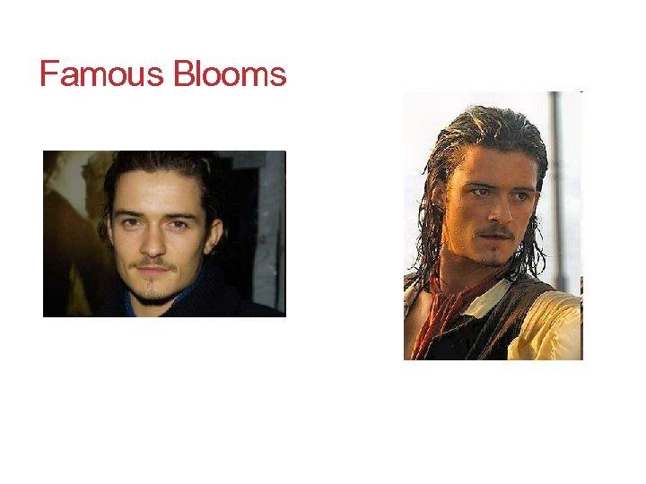 Famous Blooms