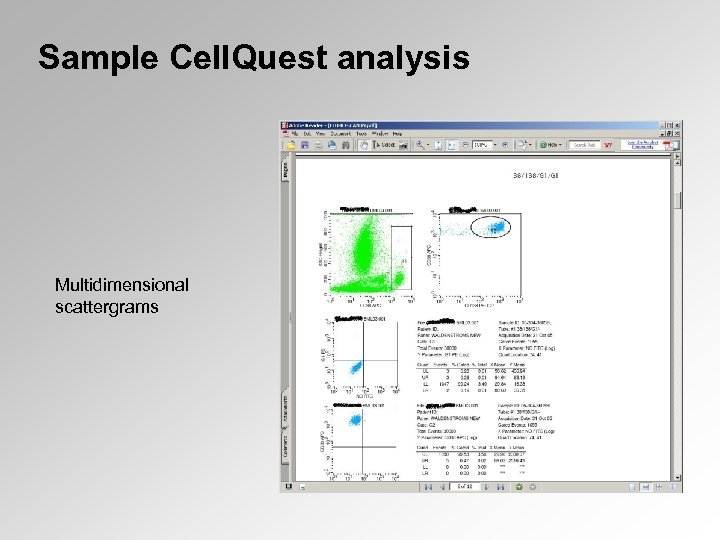 Sample Cell. Quest analysis Multidimensional scattergrams