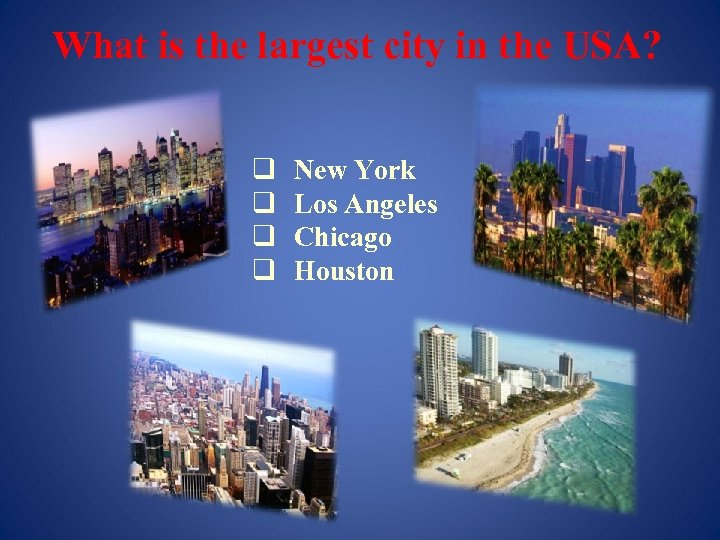 What is the largest city in the USA? q q New York Los Angeles