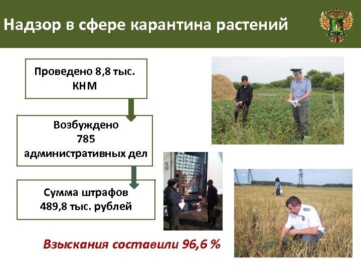 Надзор в сфере карантина растений Проведено 8, 8 тыс. КНМ Возбуждено 785 административных дел