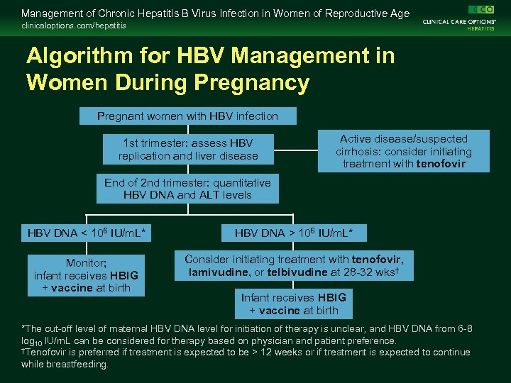 Management of Chronic Hepatitis B Virus Infection in Women of Reproductive Age clinicaloptions. com/hepatitis