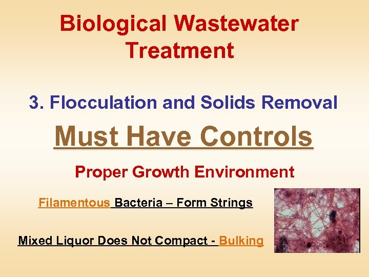 Biological Wastewater Treatment 3. Flocculation and Solids Removal Must Have Controls Proper Growth Environment