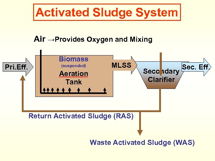 Activated Sludge System Air →Provides Oxygen and Mixing Biomass Pri. Eff. (suspended) MLSS Aeration
